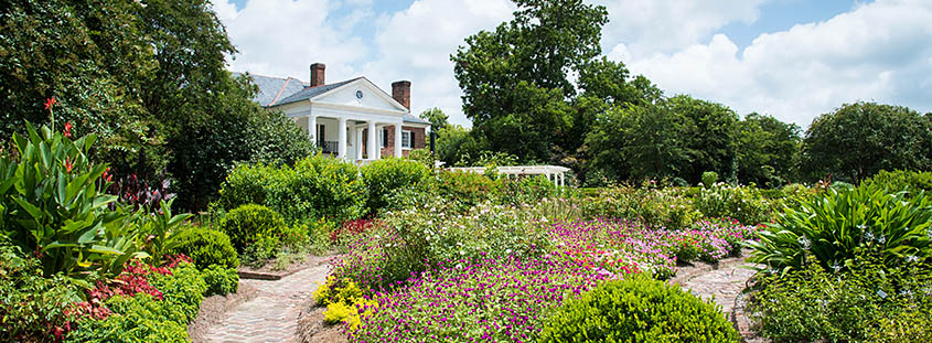 Boone Hall Plantation House from the garden. © 2017 Audra L. Gibson. All Rights Reserved.