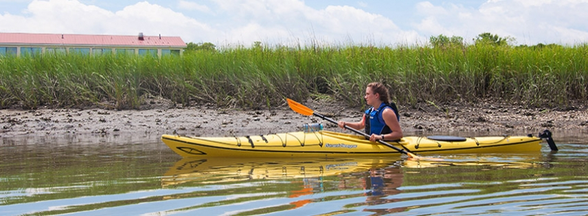 Enjoy a kayak tour with Coastal Expeditions.