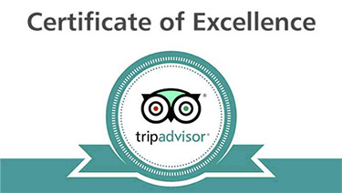 Trip Advisor Certificate Of Excellence Turquoise 375