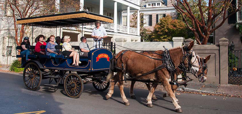 Palmetto Carriage Tour 888 845x400 Web
