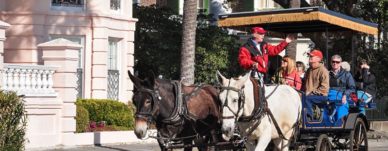 Charleston carriage tours are highly recommended to travelers visiting Charleston for the first time. © Audra L. Gibson. All Rights Reserved.
