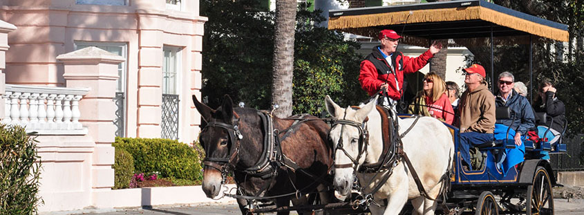 Book a discounted Charleston Carriage Tour of the downtown historic district.