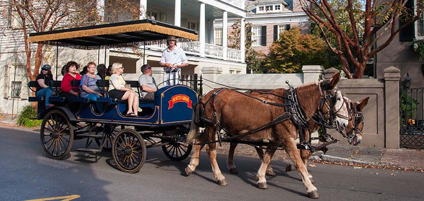 Carriage tour of downtown Charleston, SC © Audra Gibson. All Rights Reserved.