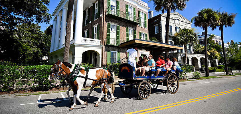 One Day Only Free Carriage Tours For Locals