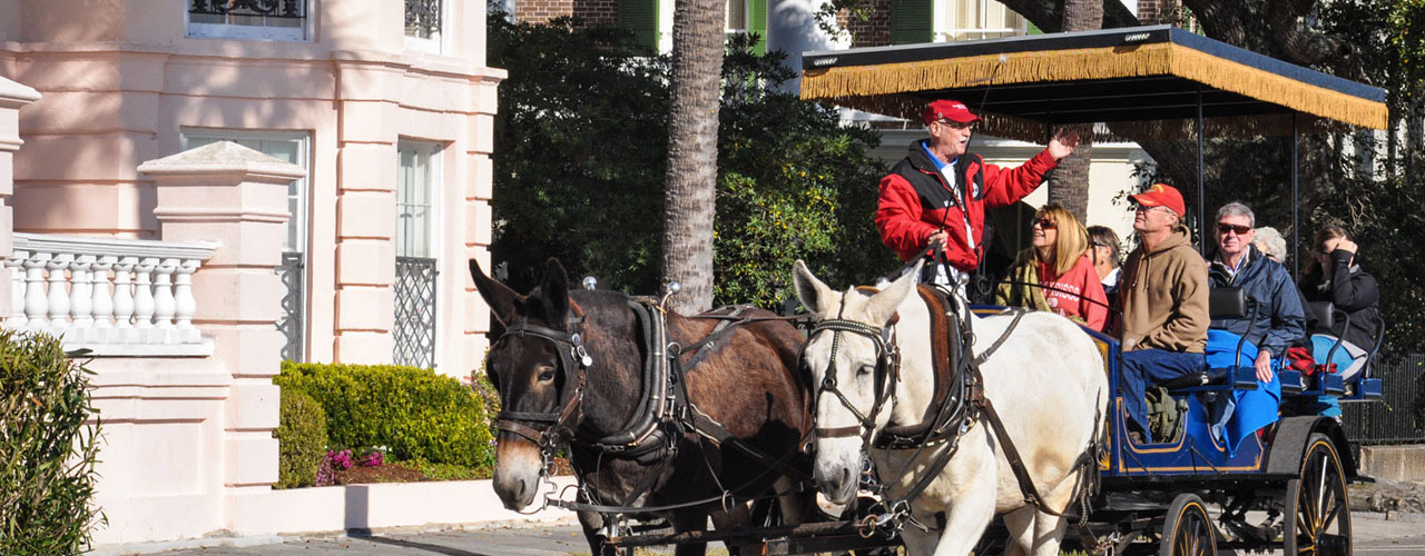 Palmetto Carriage Historic Tours