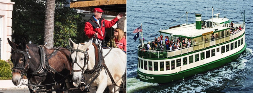 Enjoy a carriage tour and harbor tour for one low price.
