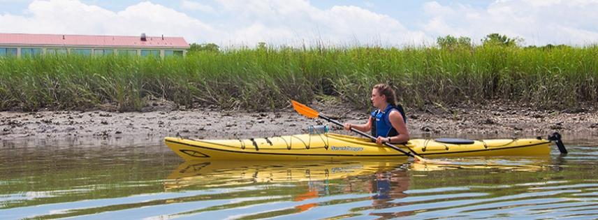 Enjoy A Kayak Tour With Coastal Expeditions