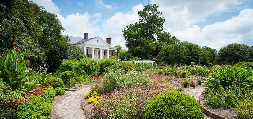 The Boone Hall Plantation house peaks out from behind the garden.